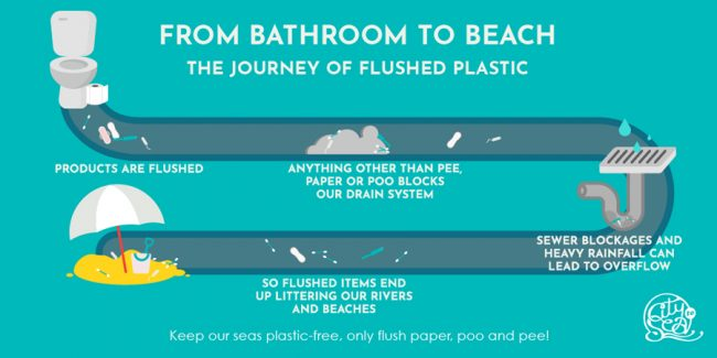 The journey of flushed plastic